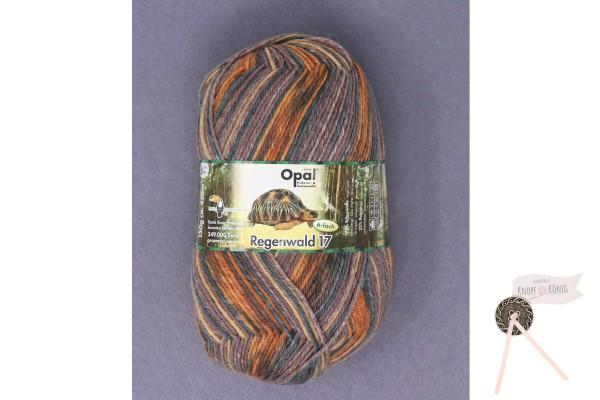Sockenwolle Regenwald 17, Thea steht im Tor