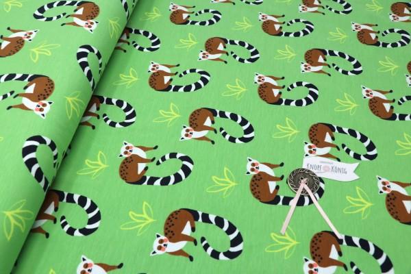 Baumwoll-Jersey Katta-Äffchen grün